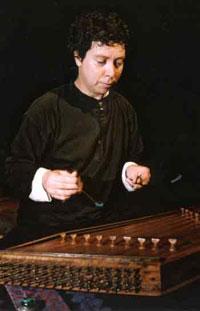 musico multi instrumentista